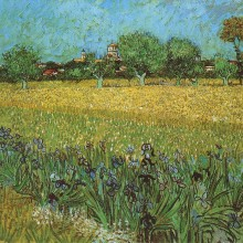 View Of Arles With Irises 1888 Van Gogh